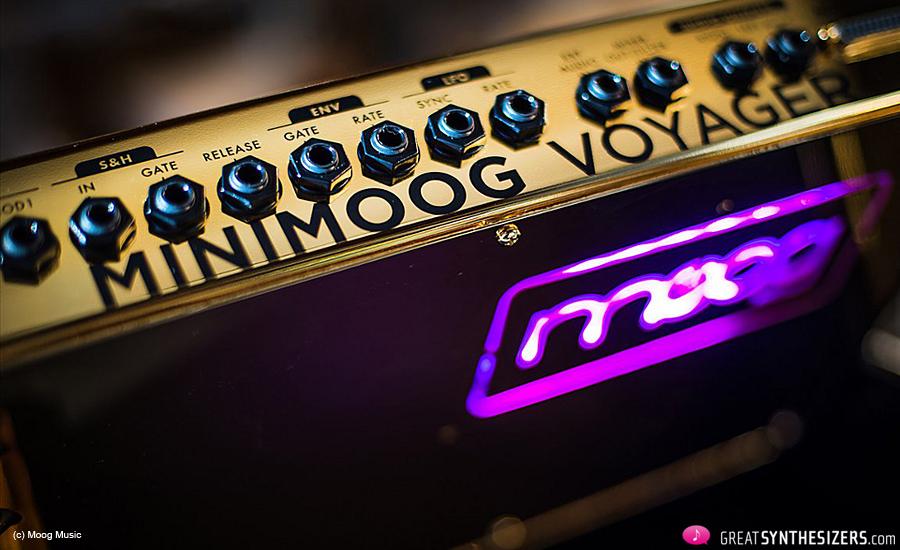 Moog-Voyager-Gold-02