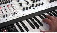 Oberheim Two Voice Pro