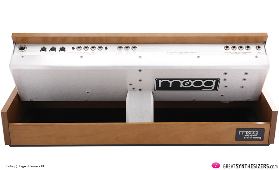 New-Minimoog-D-05